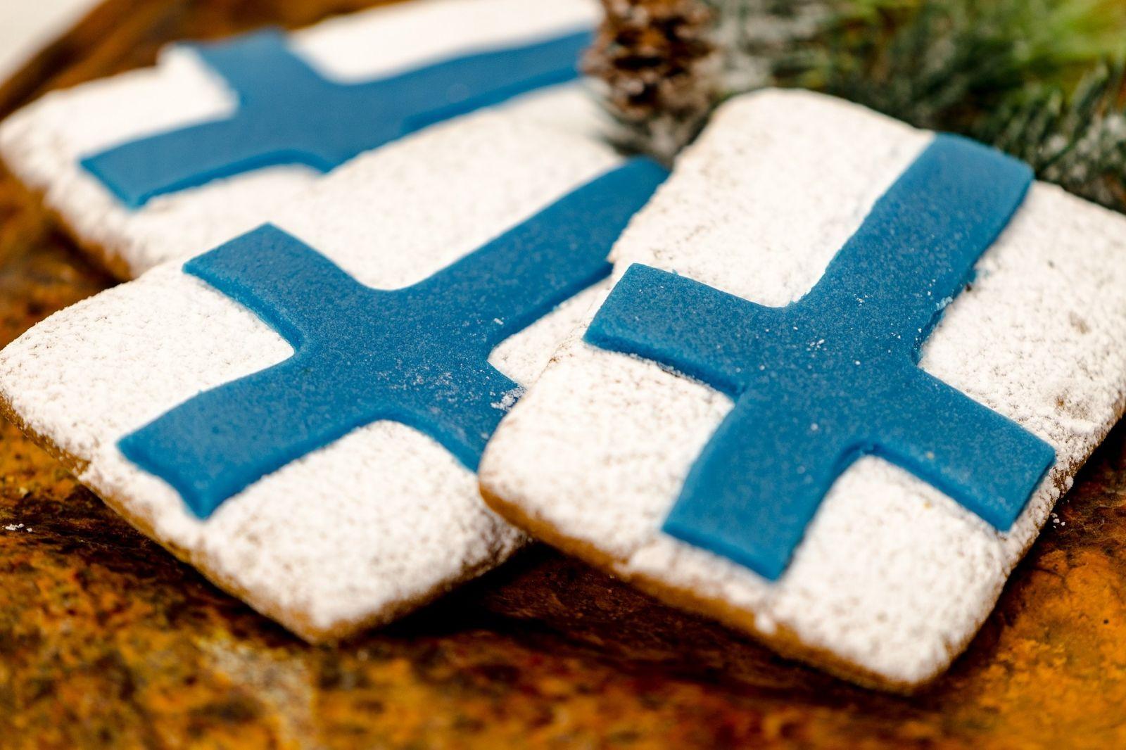 ВНЖ и гражданство Финляндие